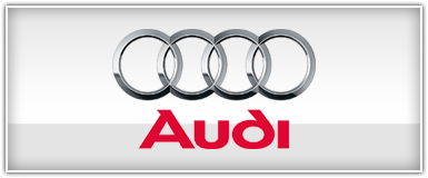 Audi - VW - Euro iPod Solution Adapters
